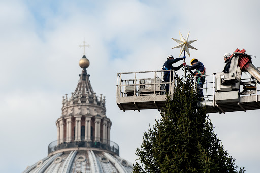 December 6, 2013: Workers decorate christmas tree on St. Peter's Square at the Vatican.