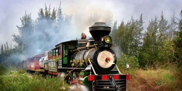 tren clásico en marcha