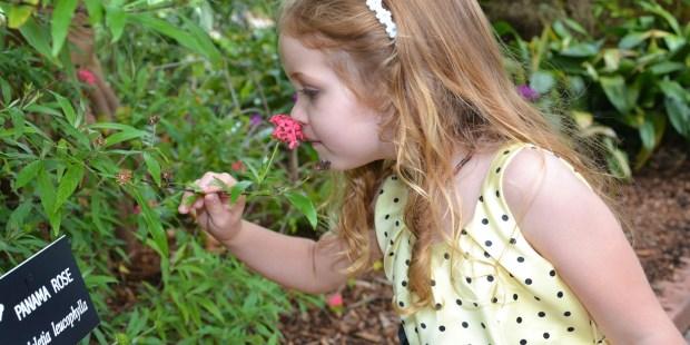 niña sintiendo el perfume de una flor