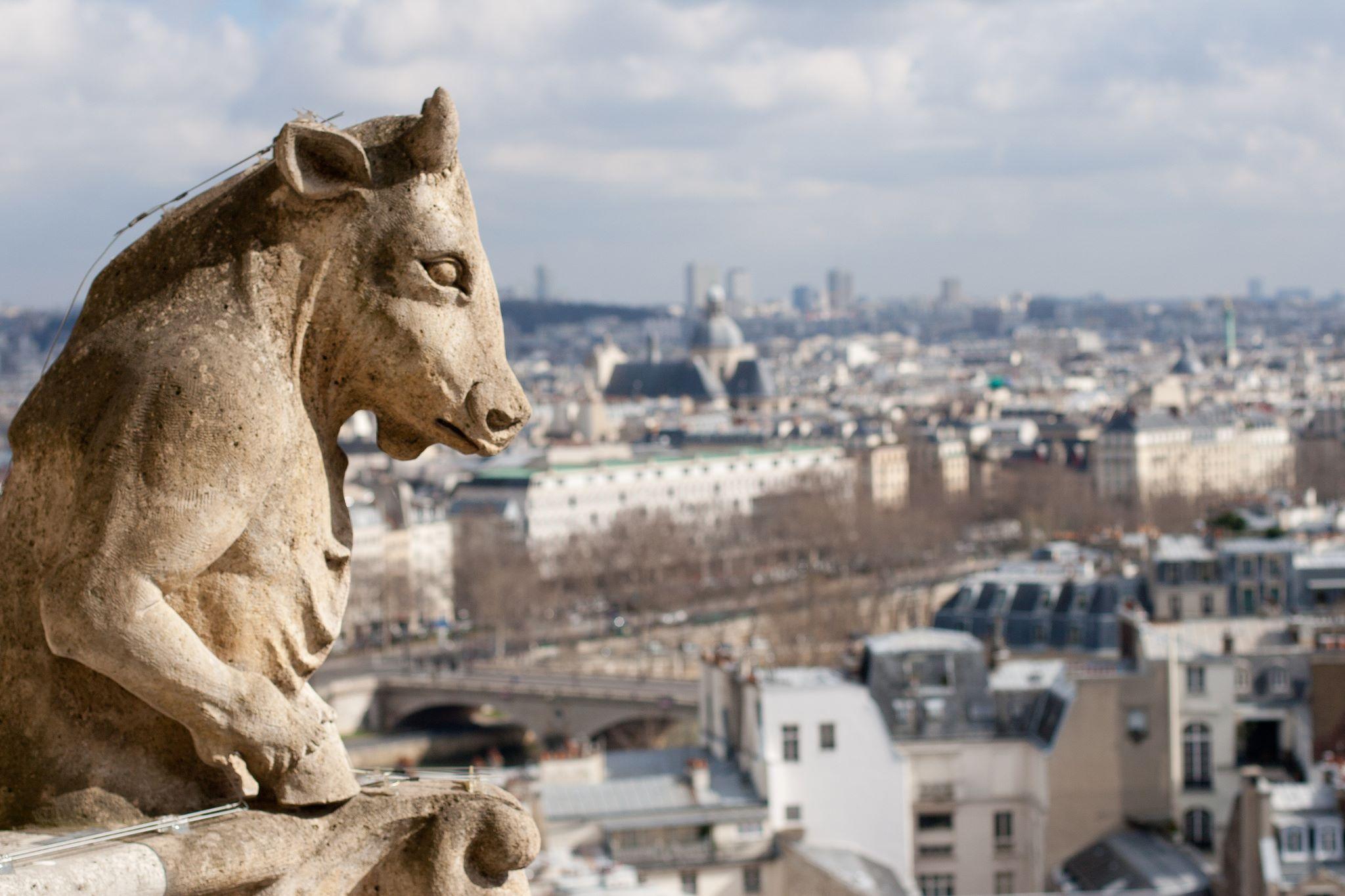 WEB-GARGOYLE-NOTRE DAME-PARIS-FRANCE-Ana Gremard-CC