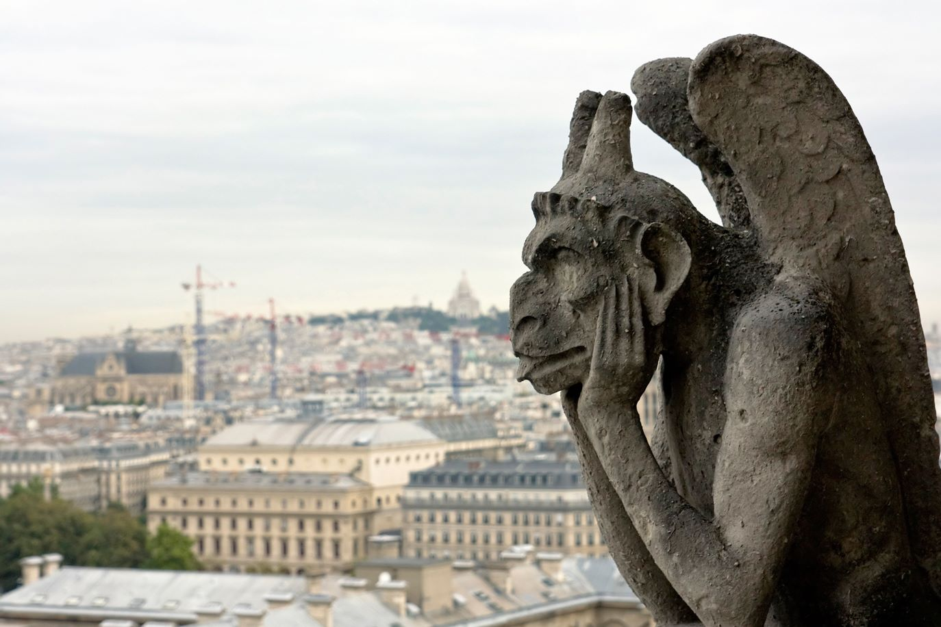 WEB-GARGOYLE-NOTRE DAME-PARIS-FRANCE-Barbara Piancastelli-CC
