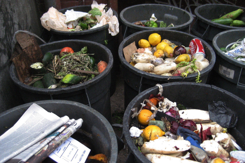 WEB-FOOD-MEAL-TRASH-pete-cc