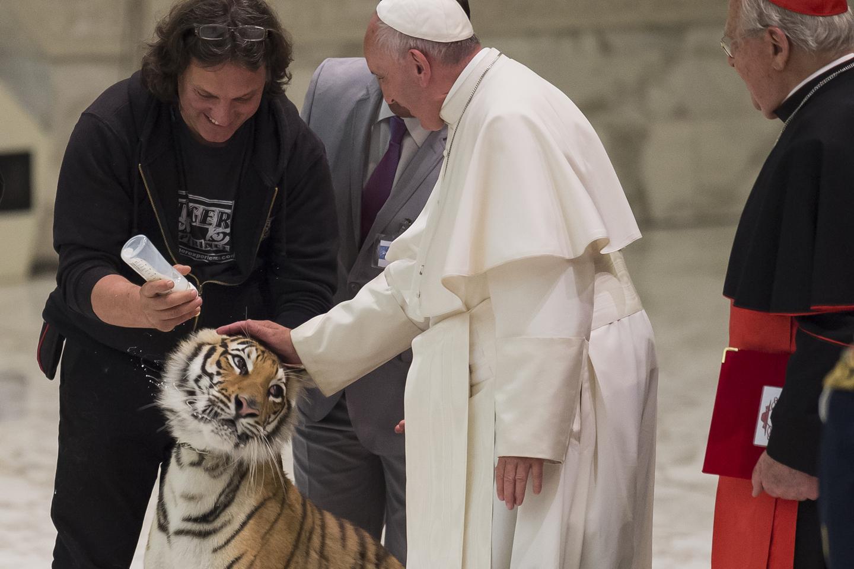 TOPSHOT - Paul VI Hall - Circus - Pope Francis June 16, 2016