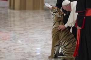 Paul VI Hall - Circus - Pope Francis June 16, 2016