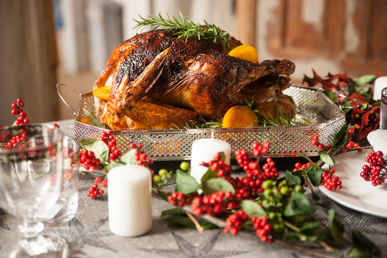 web-turkey-photo-by-veronika-kirchner-forher