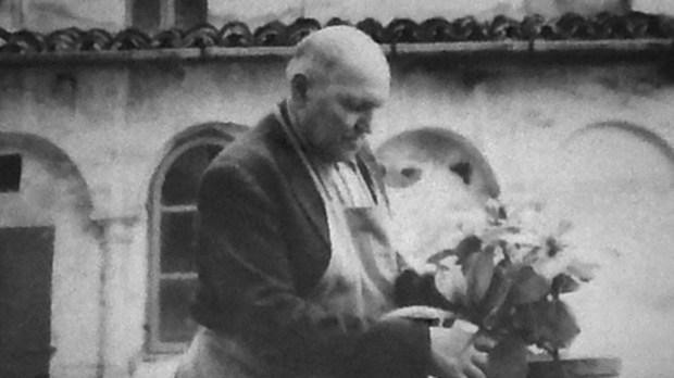 ALESSANDRO SERENELLI