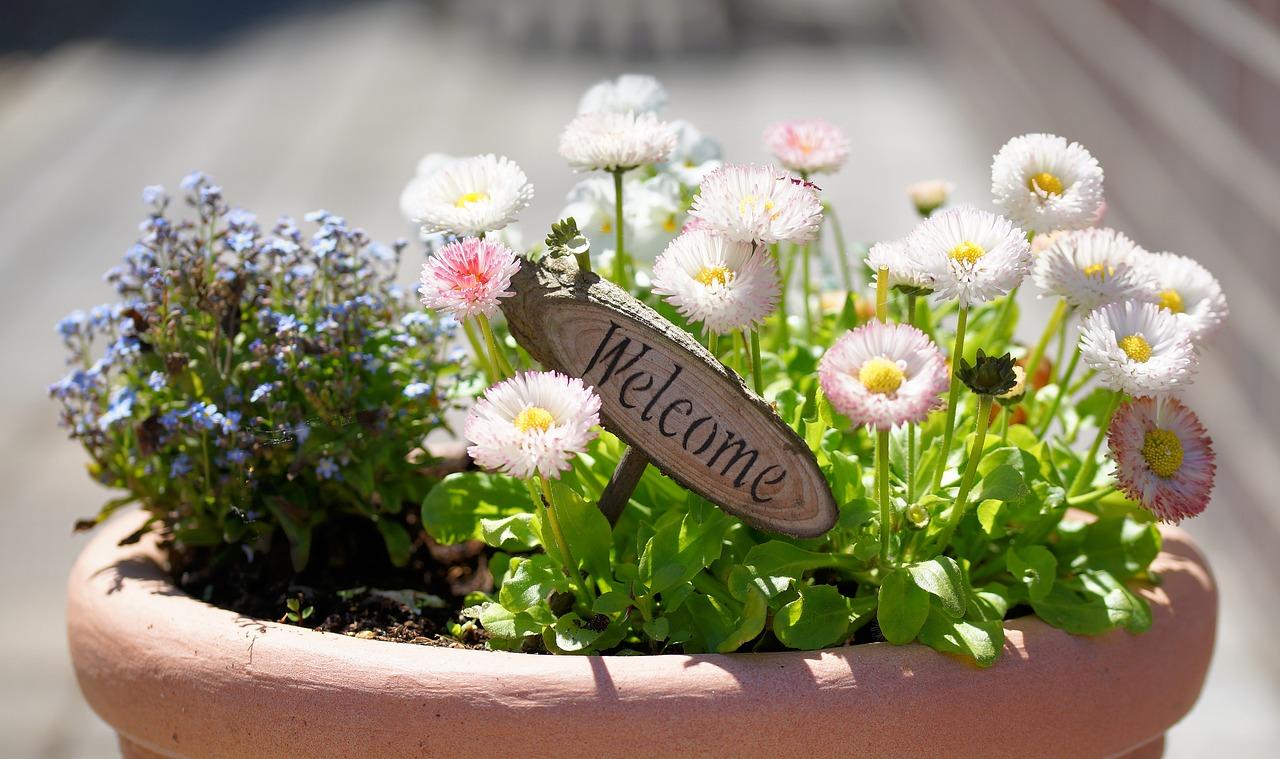 flowerpot welcome gift