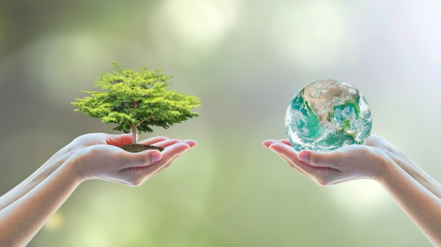 ecology, environment; day; ecology; world; biology; engineer; earth; eco; nature; planet;