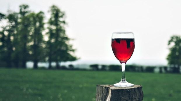 WINE,OUTSIDE,CONCEPT