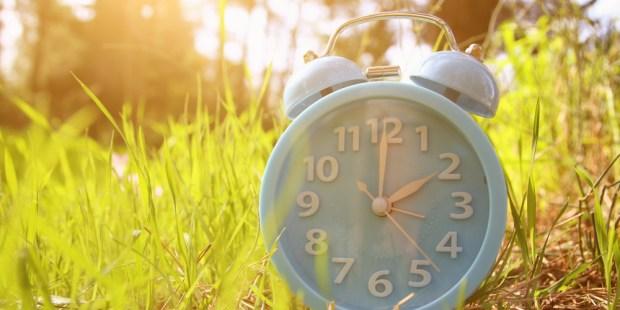 CLOCK, GRASS, SUN