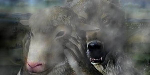 lobo cordeiro fumaça