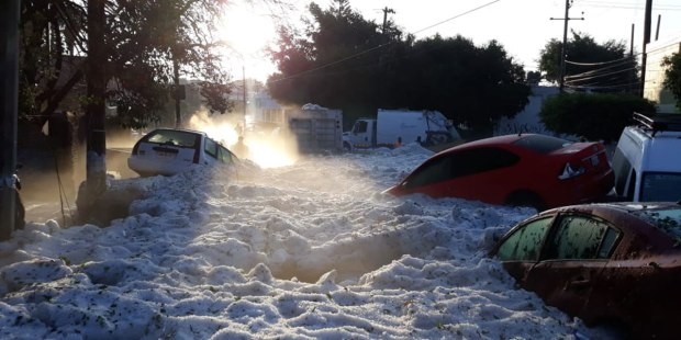 MEXICO SNOW