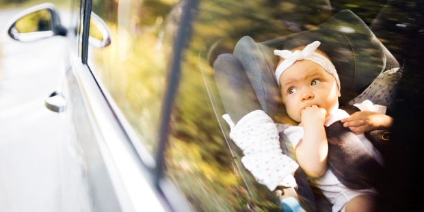 little baby security belt
