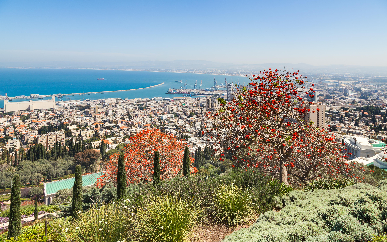 Mount Carmel - Haifa