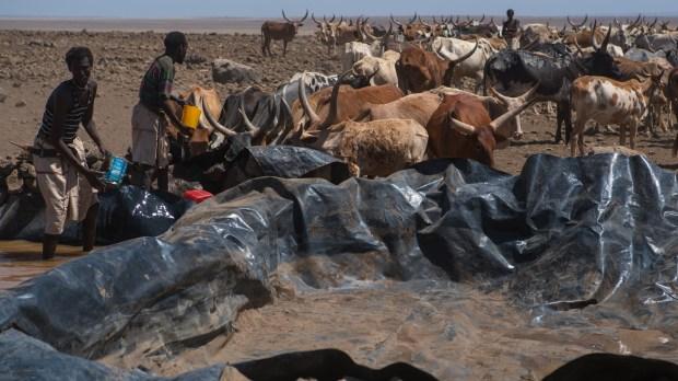 Hunger Africa