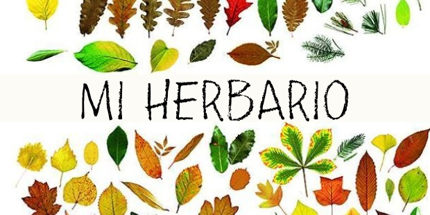 portadas herbario
