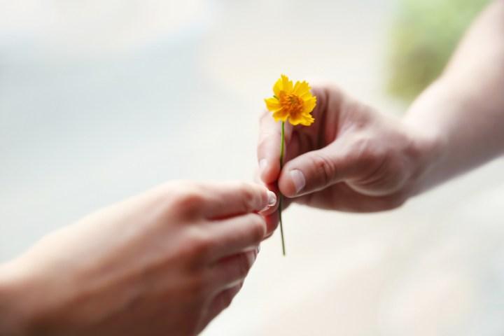 HANDS, GIVING, FLOWER