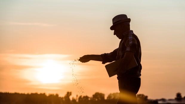 FARMER, SEEDS, SUNSET