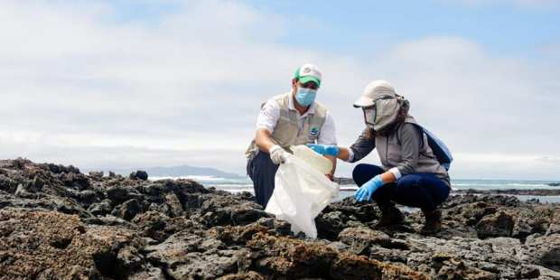 Galápagos basura